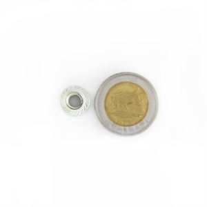 Picture of Flange Nut - Zinc Plated