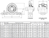 Picture of Pillow Block Bearing